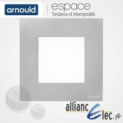 Plaque Technium Gris 1 poste Simple Arnould Espace Total Look