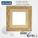 Plaque Louis XV 1 poste Simple Arnould Espace Style
