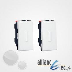 Double Poussoir inverseur Legrand Mosaic à voyant à LED blanc - 2x1 module - 6 A