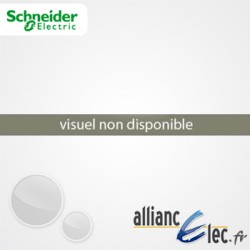 Déclencheur de Sous-Tension Indép, 220-240VCA Schneider ACTI 9