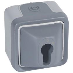 inter a cle prog plexo complet saillie gris pour barillet europeen 10 a 250v