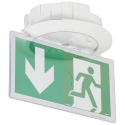 baes baeh d evacuation kickspot encastre eco1 leds 45lm 1h plastique ip40 ik04