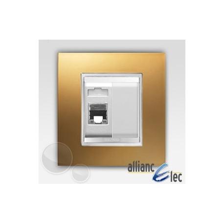 Connecteur rj45 2m cat 5 lux or sur blanc complet + support Gewiss Chorus