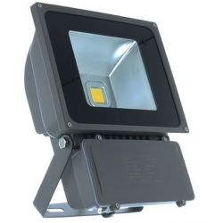 PROJECT LED VISION-EL 230 V 80 WATT 3000°K GRIS IP65