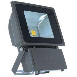 PROJECT LED VISION-EL 230 V 80 WATT RGB GRIS IP65