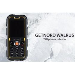 Téléphone professionnel et robuste Ingram GetNord