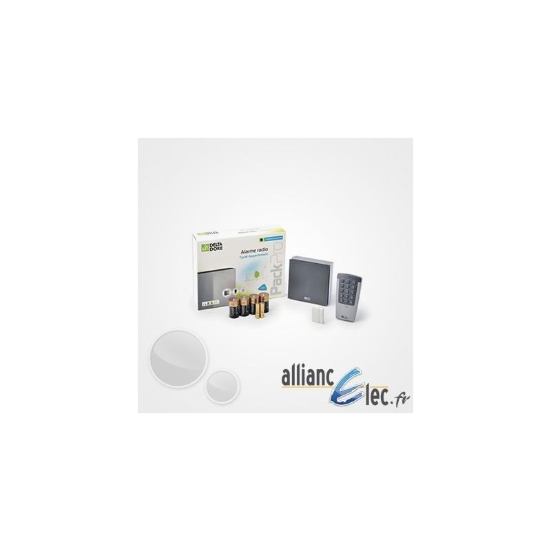 alarme radio deltadore tyxal pour appartement ou petite maison. Black Bedroom Furniture Sets. Home Design Ideas